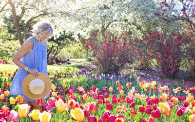 Menopause and Bioidentical Hormones